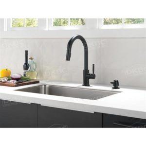 Delta-trask kitchen faucet